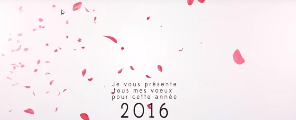 Carte de voeux Florence Drean 2016-Lyon