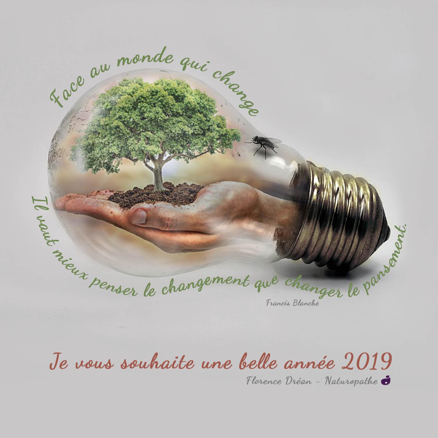 Carte-de-voeux-2019-Florence-Dréan-naturopathe-Saint-Genis-Laval